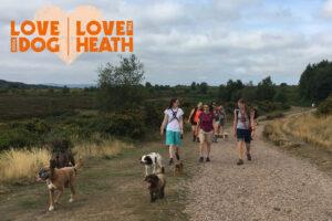 Waggy Walk - HEATH WEEK @ Four Firs   United Kingdom