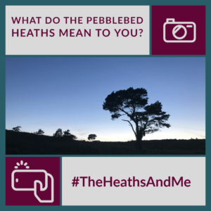 The Heaths And Me Project