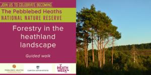 Forestry in the heathland landscape - HEATH WEEK @ Warren car park